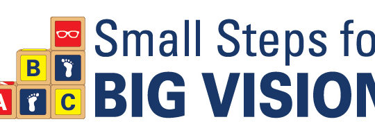 Small Steps for Big Vision logo
