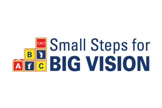 Small Steps for Big Vision