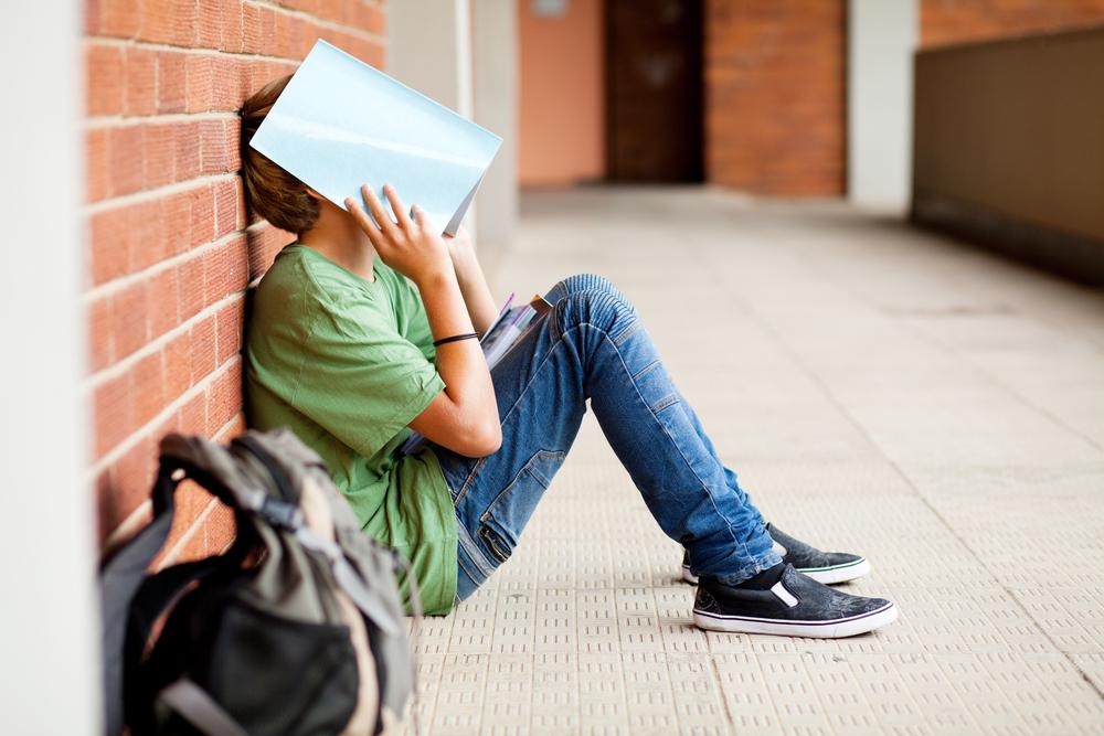 Vision and Behavior in School